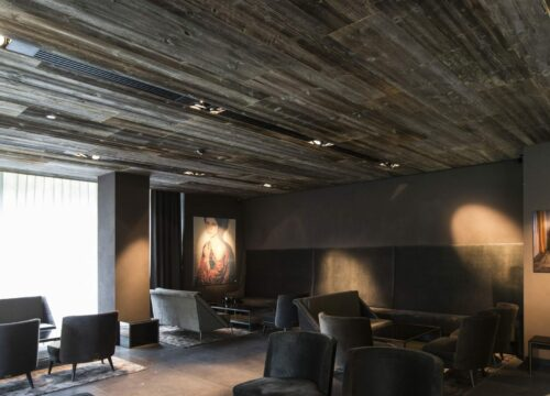 ELEMENTs Altholz sonnenverbrannt Hotel Zhero 2 scaled